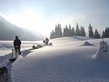 photo from huskydalen.com